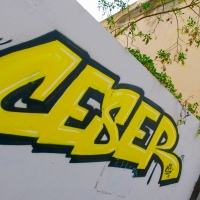 """CESER (""""Amarillo"""")"""