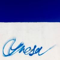 """""""Azul y fresa"""""""