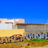 SAKER / RABIA