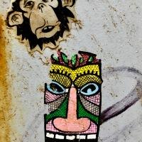 """""""En la jungla"""""""